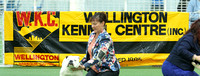 Wgtn Kennel Centre