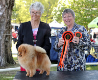 Taupo Kennel Assoc